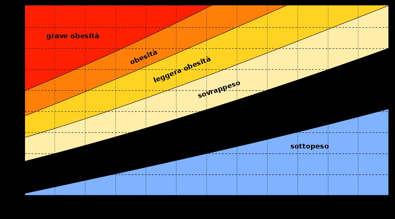 Indice di massa corporea: cos'è?