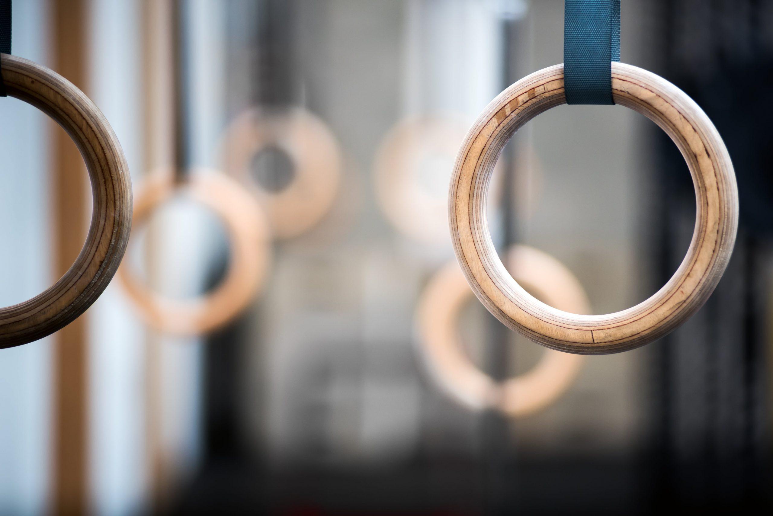 Quali anelli calisthenics scegliere?