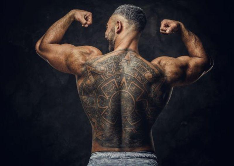 Muscoli coinvolti trazioni alla sbarra